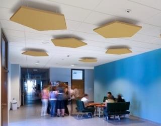 Ecophon plafond eiland Pentagon - Systeemplafonds.nl