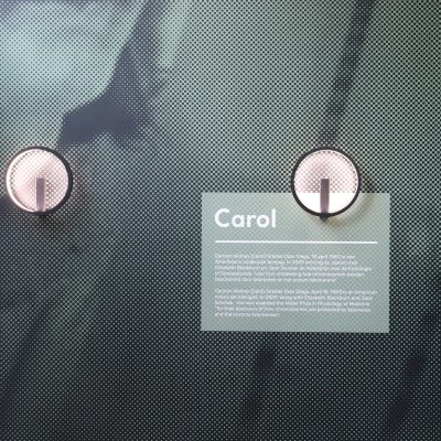 Trinity-Carol-Systeemplafond