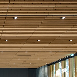 grill-ceiling-base-line