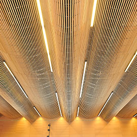 grill-ceiling-pro-line